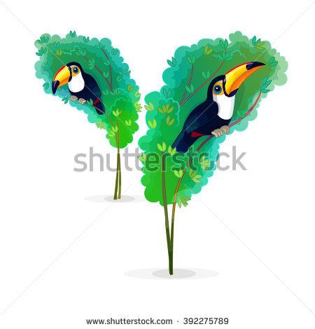 Piciformes Stock Photos, Royalty.