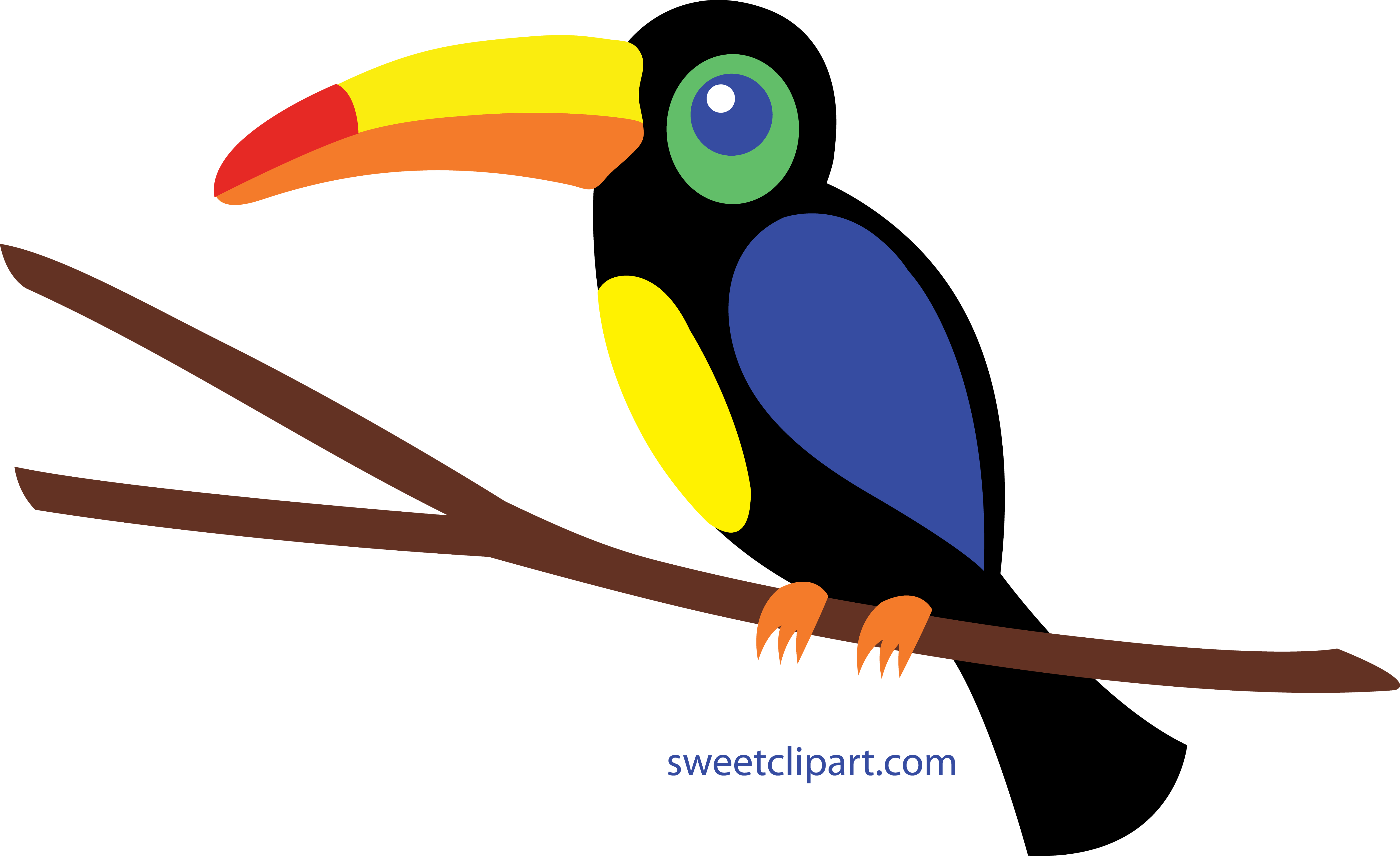 Tucan clipart - Clipground - 436.0KB