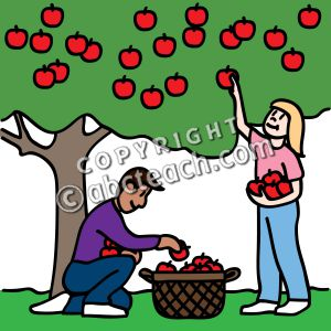 Apple Picking Clip Art.