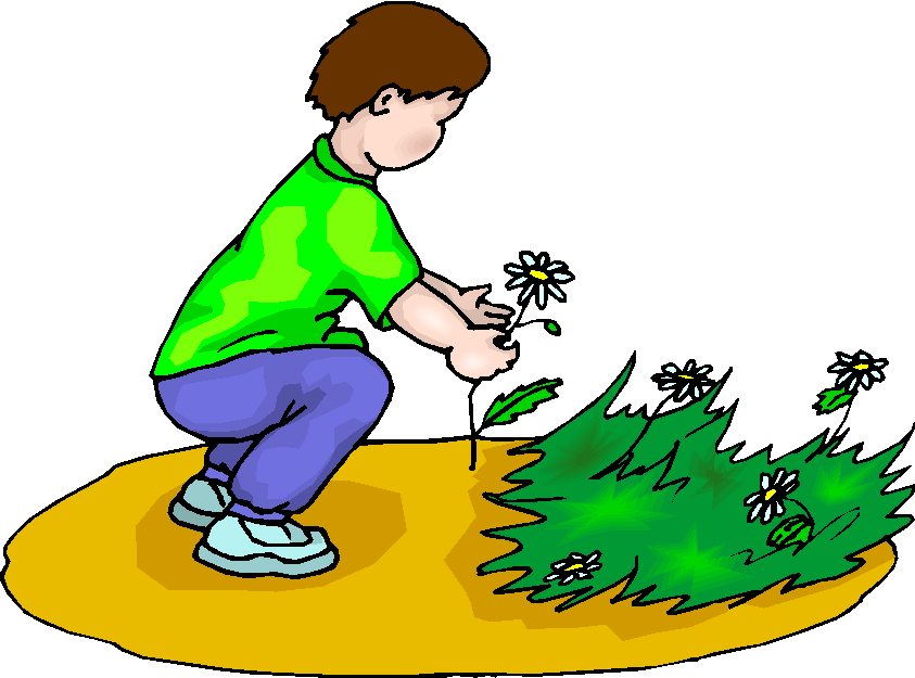 Boy Picking Flowers Free Clipart.