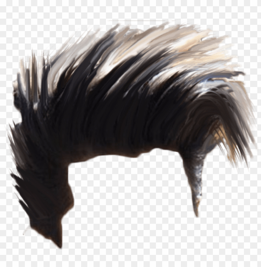 hair png download hd quality.