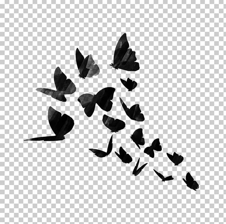 Sticker PicsArt Photo Studio Decal Editing PNG, Clipart.