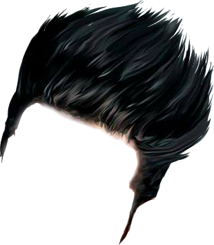 PNG Hairstyle Transparent Hairstyle.PNG Images..