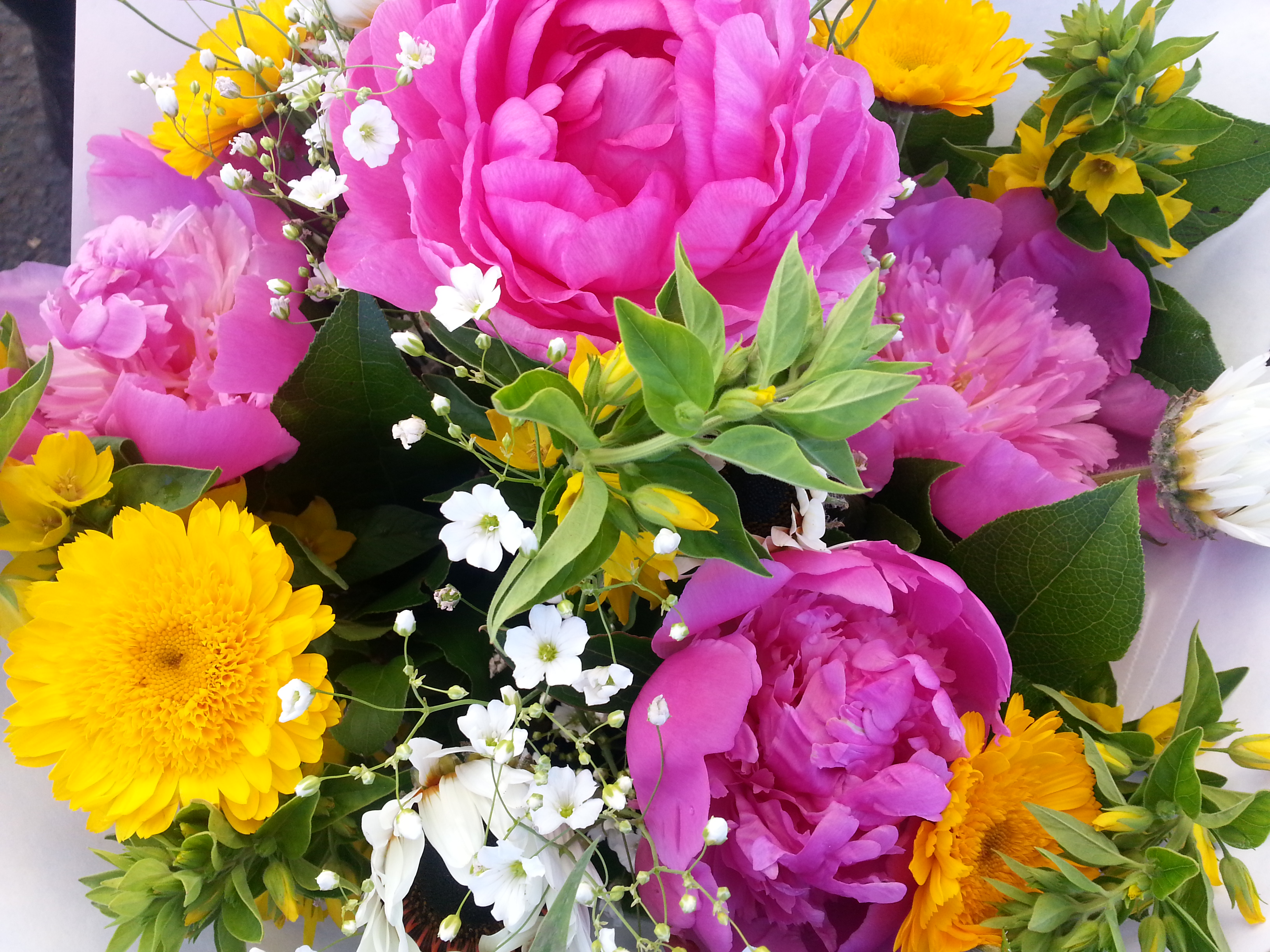Big Bunch Of Flowers.