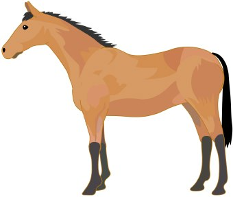 Clipart Horse Free.