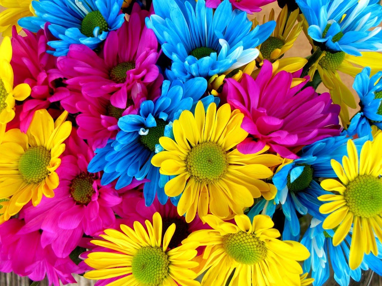 May Flowers beautiful Music, Inspiration.