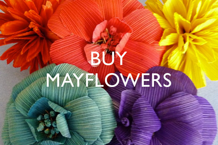 Share Mayflowers.