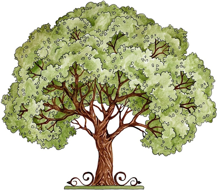 345 best Printables Trees images on Pinterest Tree.