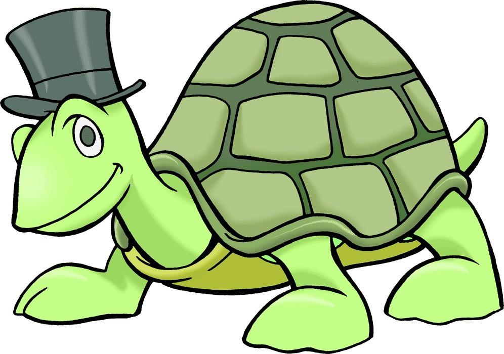 Turtle clip art free cartoon.