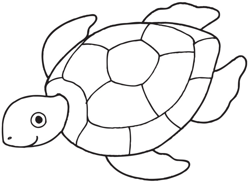 Best Turtle Clipart Black And White #12943.