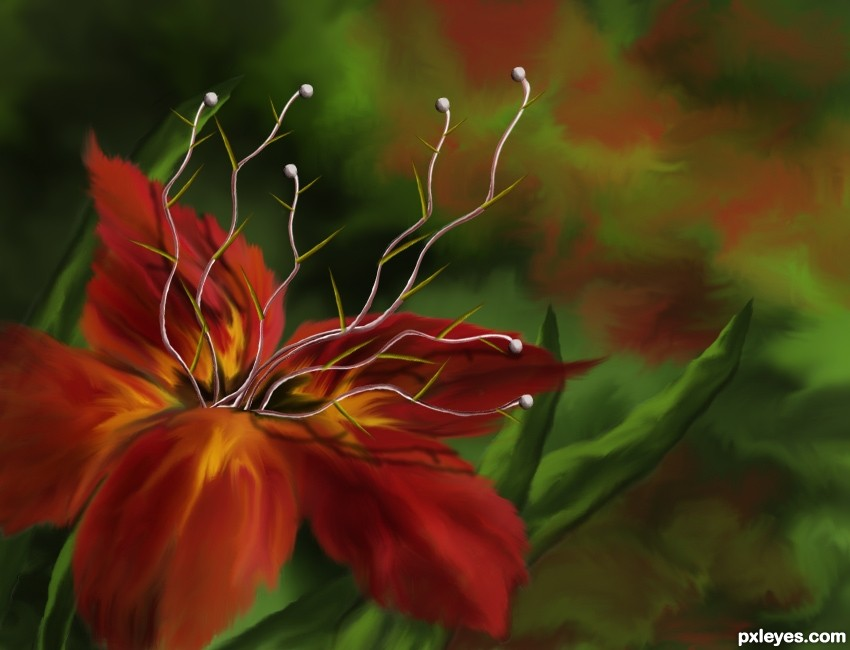 pictures of beautiful exotic flowers #5