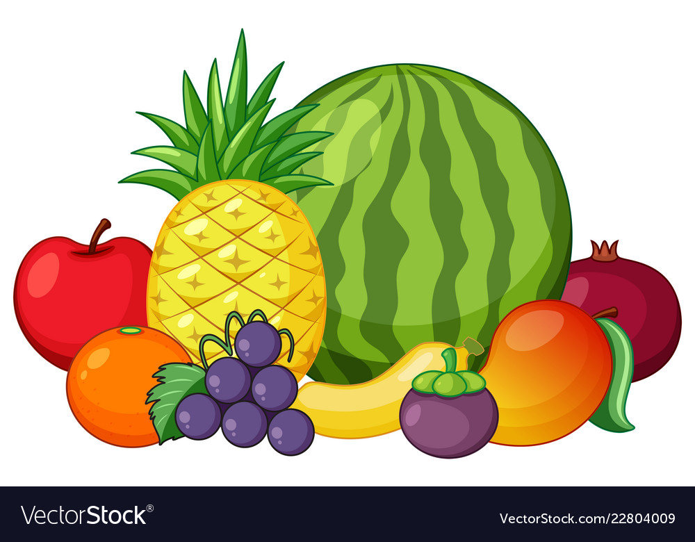 Set of mixed fruit vector image.