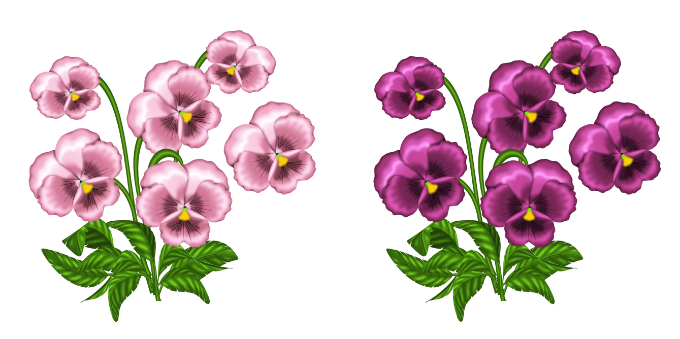 Pink Violets PNG Clipart.