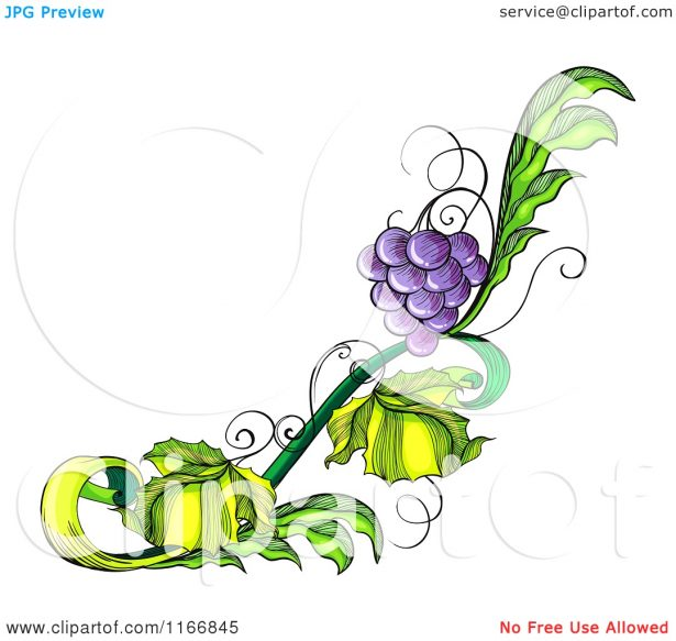Kitchen. grape designs: Picturesque Grape Svg Vector File Clip Art.