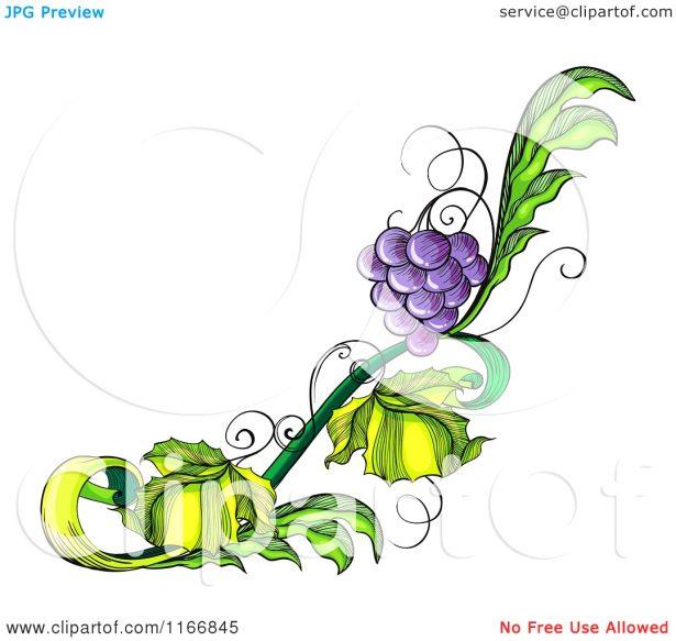 Kitchen. grape designs: Picturesque Grape Svg Vector File Clip Art.