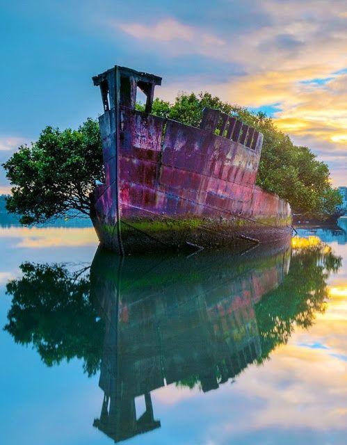 Homebush Bay, Australia 101 Most Beautiful Places You Must Visit.