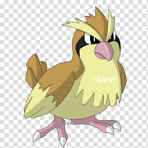 Pidgeotto Pidgey Johto Pokémon Shroomish, pokemon.