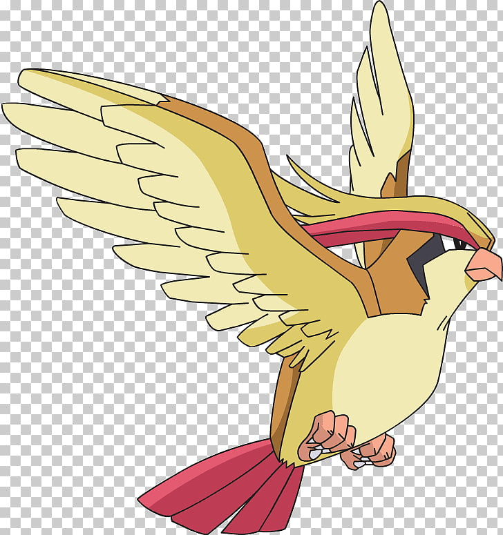Pokémon GO Pidgeotto Pokémon types, pidgey PNG clipart.