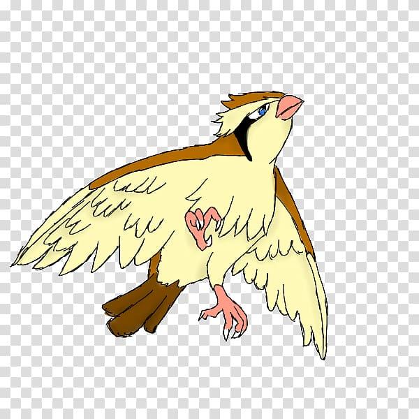 Pidgeotto Bird Pidgey Pokémon GO, pidgey transparent.