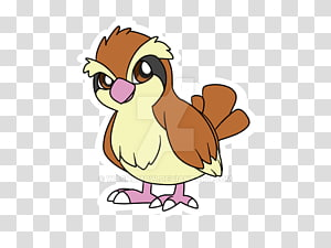 Pidgey transparent background PNG cliparts free download.
