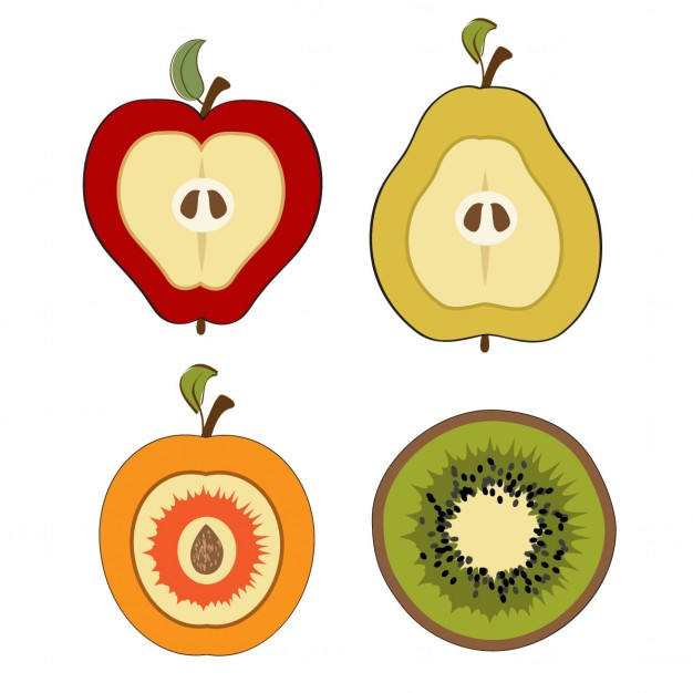 Collection of pieces of fruit cut in half Vector.