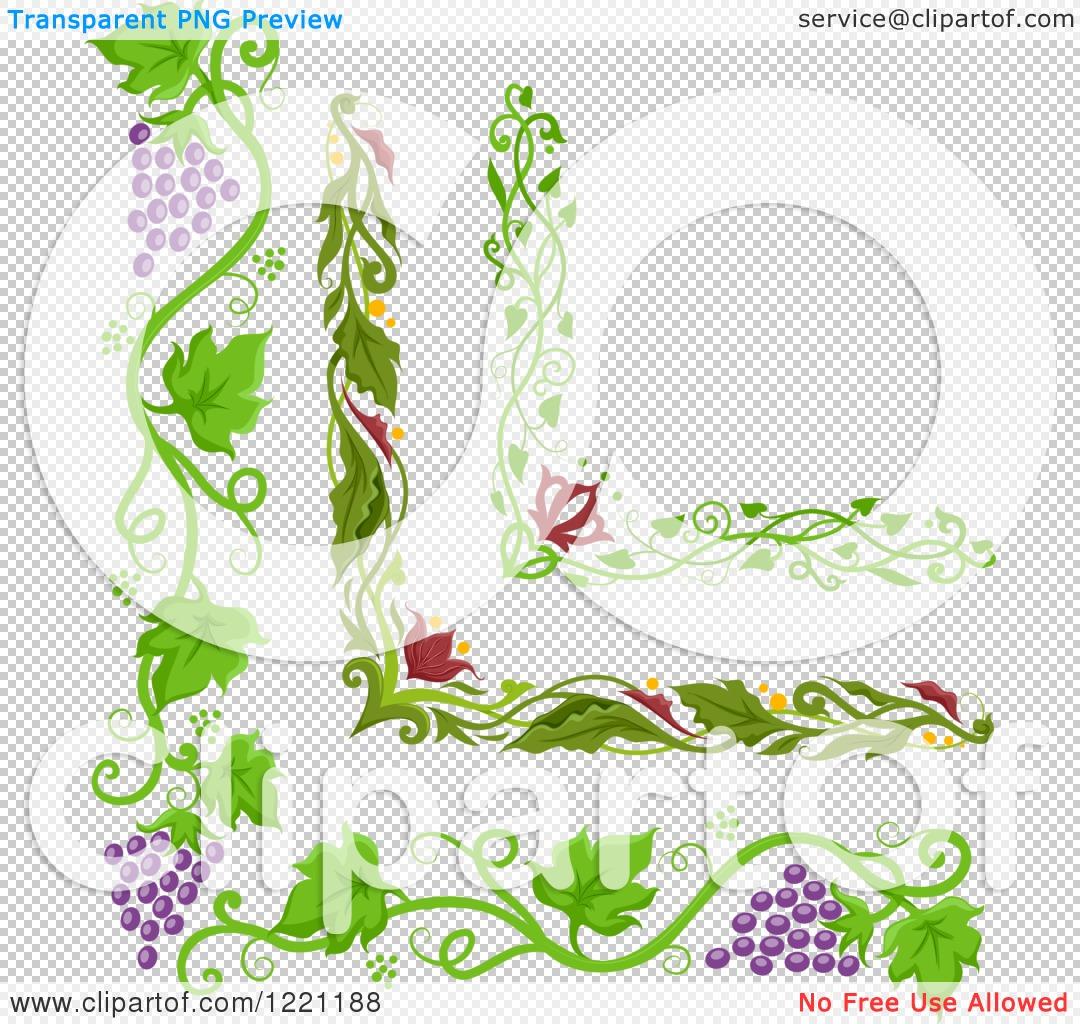 Clipart of Grape Vine and Floral Corner Borders.
