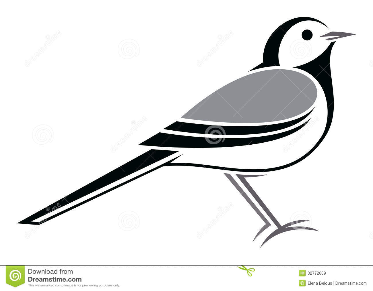 African Pied Wagtail Stock Illustration.