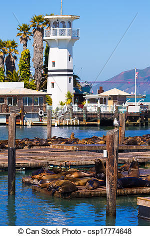 Stock Photo of San Francisco Pier 39 lighthouse and seals.