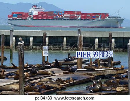 Stock Photography of Pier 39, Seals, Container Ship In Background.