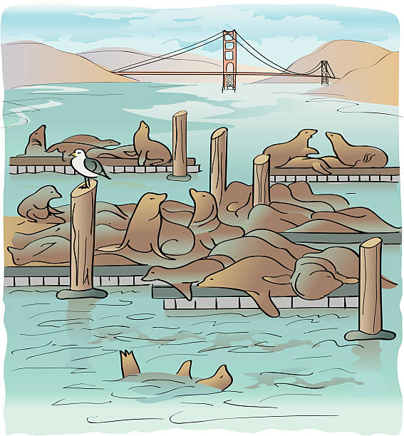 Pier 39 Clip Art, Vector Images & Illustrations.
