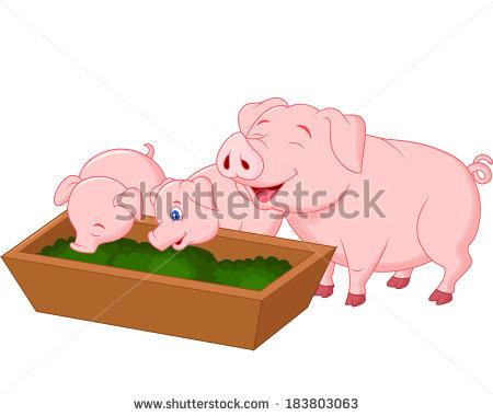 Pig Family Stock Photos, Royalty.