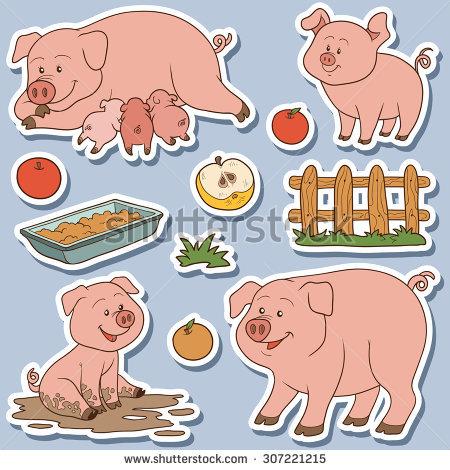 Farm Pig Stock Photos, Royalty.