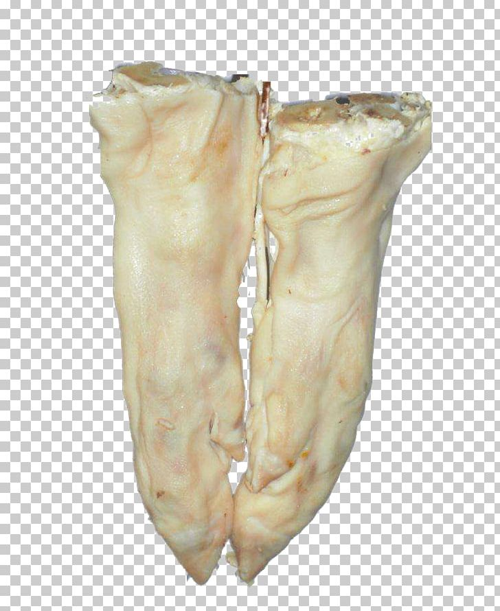 Domestic Pig Pigs Trotters Pork Food PNG, Clipart, Animal.
