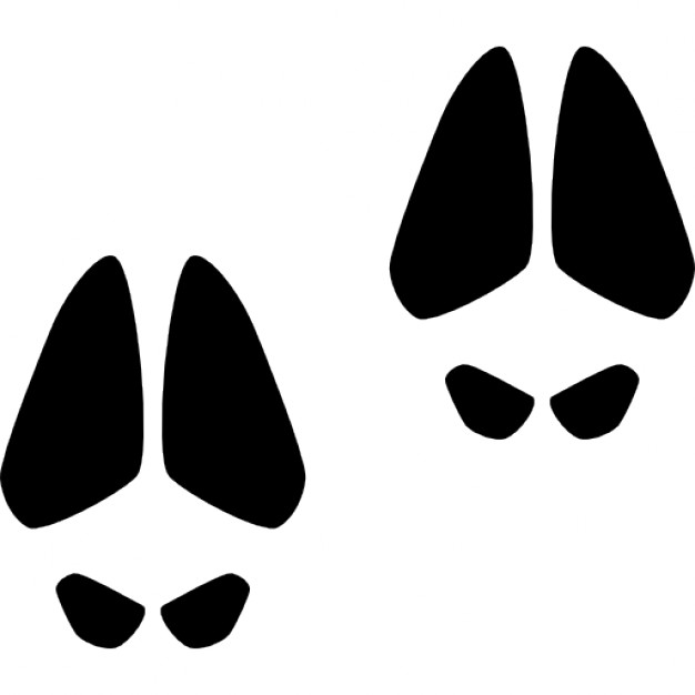 Mammal Shape Vectors, Photos and PSD files.