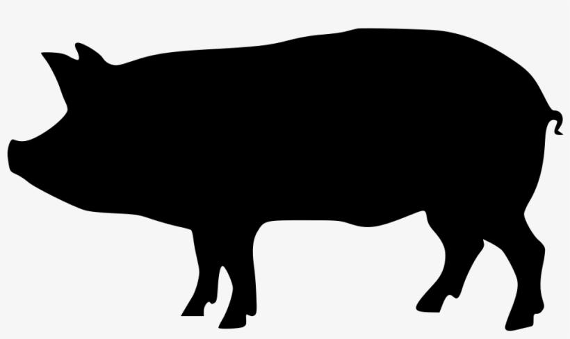Download Pig Png Transparent Images Transparent Backgrounds.