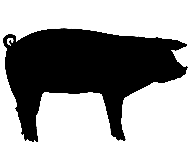 show pig silhouette clip art.