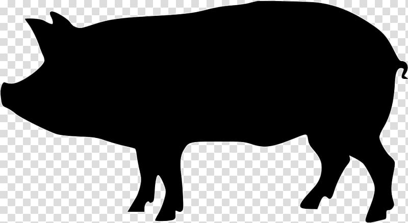 Black and white pig sketch, Domestic pig Silhouette , pig.