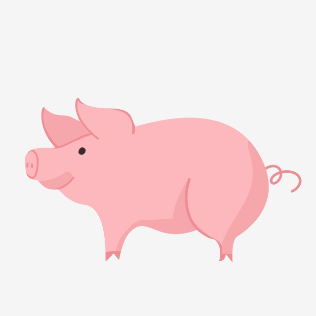 Pig Vector, Pig Vector Illustration Pig Vector Illustration.