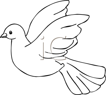 Pigeon bird clipart.