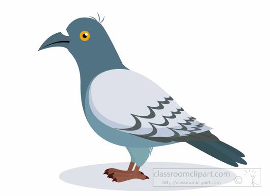 Bird clipart pigeon bird clipart 2.