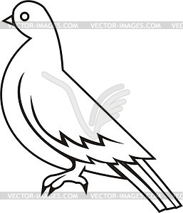 White pigeon clipart.