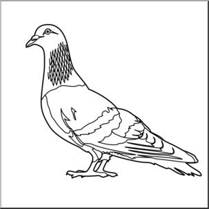 Clip Art: Pigeon B&W I abcteach.com.