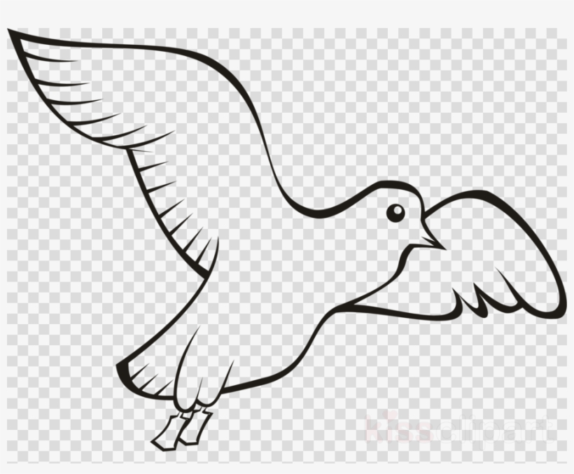 Bird Clipart Homing Pigeon English Carrier Pigeon Pigeons.