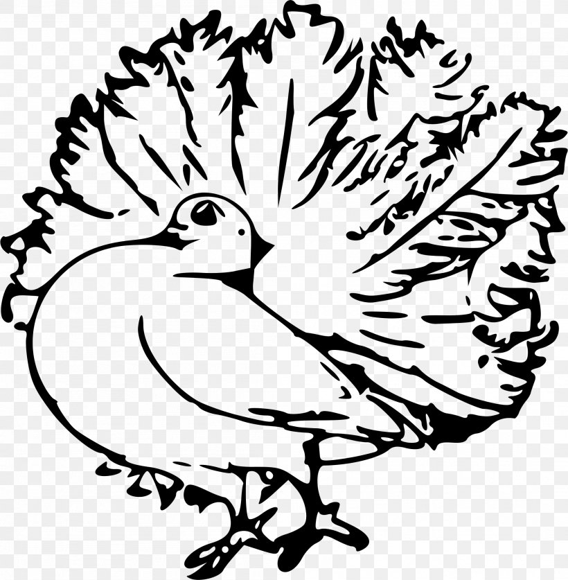 Homing Pigeon English Carrier Pigeon Columbidae Clip Art.