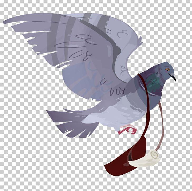 English Carrier Pigeon Homing Pigeon Columbidae Bird King.