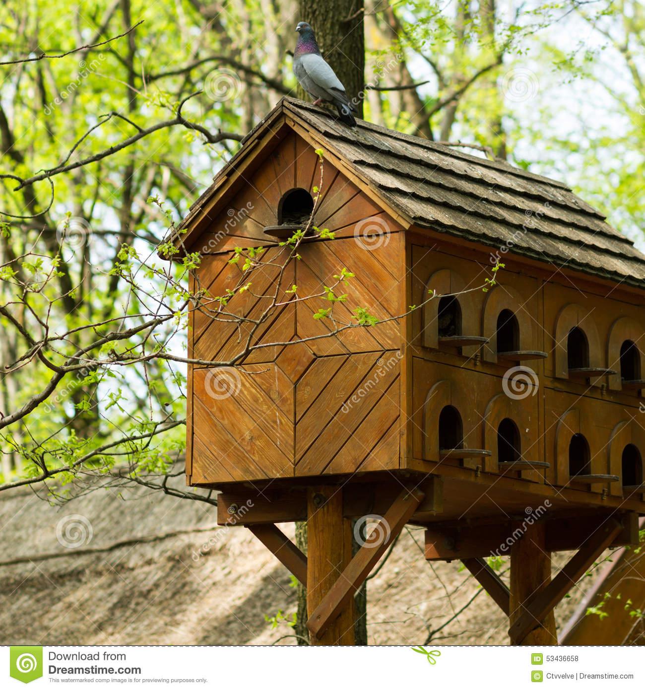 Pigeon House Stock Photo.
