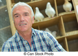 Pigeon loft Stock Photos and Images. 121 Pigeon loft pictures and.