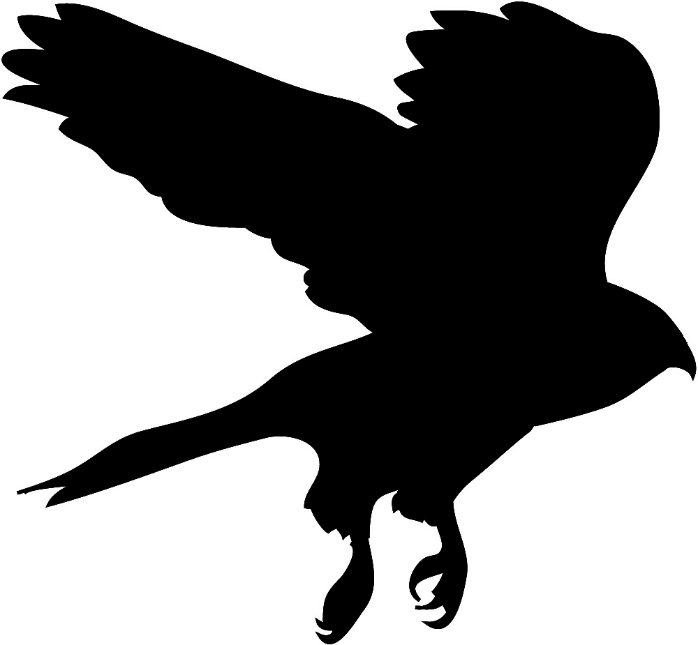 Bird Silhouettes.
