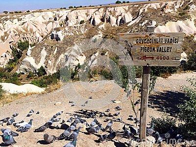 Entrance Of Pigeon Valley, Cappadocia, Turkey. Stock Photo.