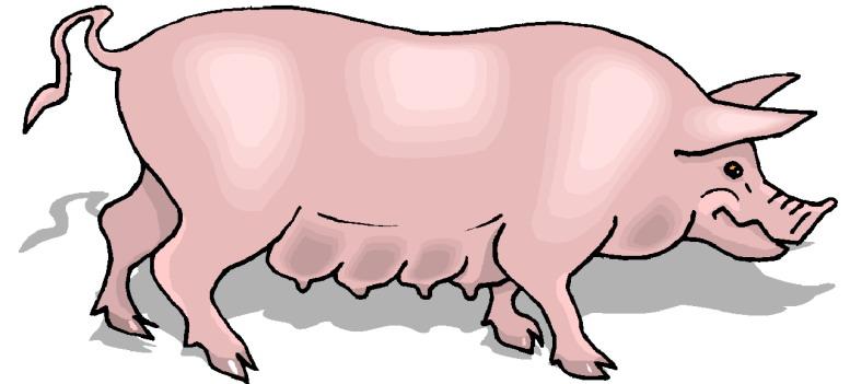 Pigs Clip Art.